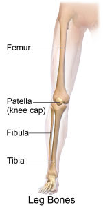 Leg bone injury area
